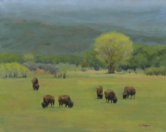 Summer Bison (SOLD)