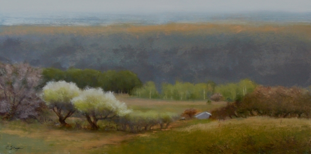 El Valle Orchard (SOLD)