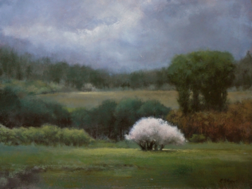Stormy Day at Blue Spring (sold)